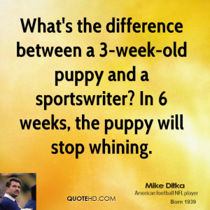 ... old puppy and a sportswriter? In 6 weeks, the puppy will stop whining