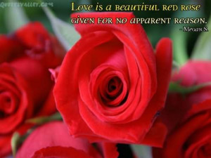 Love Is A Beautiful Red Rose