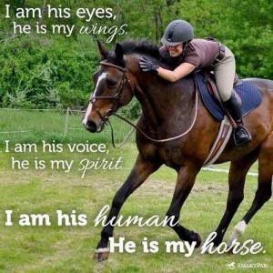 pinterest.com/DianaDeeOsborne/gorgeous-horses-more - Quote: