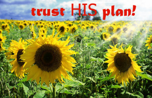 Trust His plan.