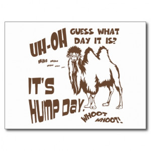 Hump Day Wednesday Funny Camel Postcard
