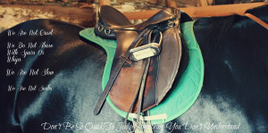 English Riding Stereotyped by 6horsecrazygurl9