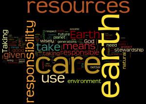 ... stewardship means