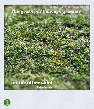 Quotes | The grass isn't always greener on the other side…