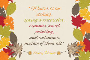 Super Quotes for an Inspriational Autumn by Sandra Van Heems for ...