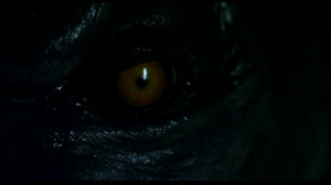 Werewolf Quotes And Sayings Movie - werewolf the beast