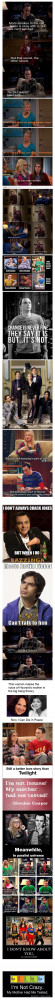 Theory: Best Show EVER: Big Bangs Theory Humor Sheldon, Sheldon Cooper ...