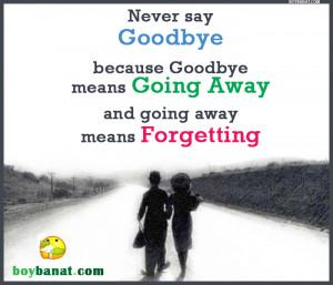 Goodbye Quotes and Goodbye Sayings