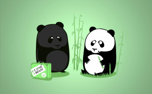 Very funny Cartoon Panda with quote beautiful wallpaper in HD
