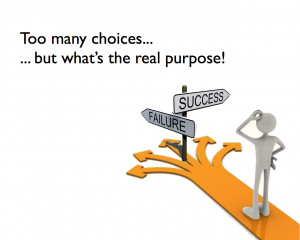 Too Many Choices But Whats The Real Purpose Success Failure