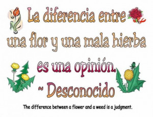 Cute short love quotes in spanish