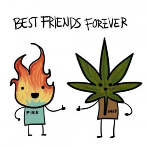 Funny friendship quotes to make you laugh (28)