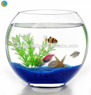 oblique glass fish bowl/glass fish tank