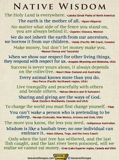 native wisdom more native american quotes special quotes indigenous ...