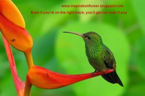 Best Motivational Photo Quotes