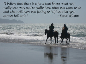 horse-in-surf-quote
