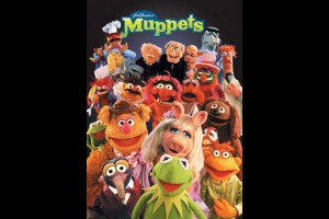 the muppets animal adult costume buy online costumes new zealand