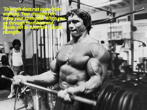 Arnold Schwarzenegger: A Collection of Quotes to Live By