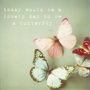 Today would be a lovely day to be a butterfly.