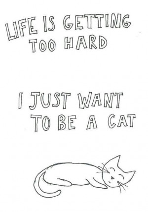 ... monday, problems, quote, quotes, school, ugh, life is hard so be a cat