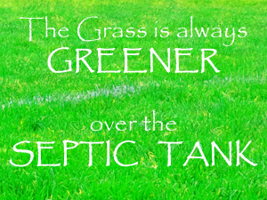 Grass Is Not Always Greener