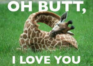 http://www.graphics99.com/true-love-funny-giraffe-foto/
