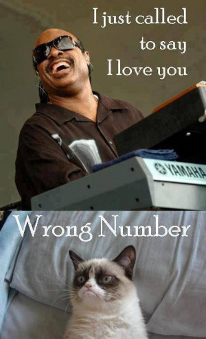 just called to say I love you Wrong Number