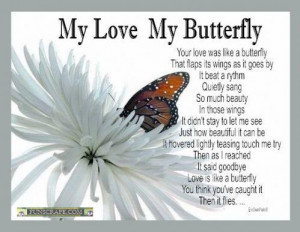 Butterfly Quotes Comments and Graphics Codes!