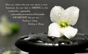 mj-abiding-quote-zen-stone-flower-pic
