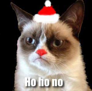 grumpy cat, christmas pictures, ho ho ho