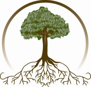 oak-tree-silhouette-with-roots-13592871931044535544tree-roots_000-hi ...