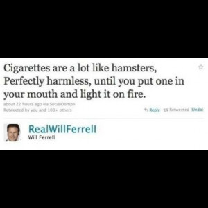 smoking #hamsters #funny #twitter #will #ferrel #quotes