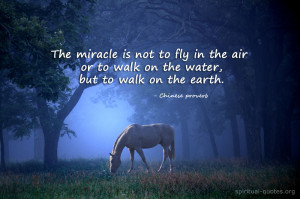 The real miracle - Chinese proverb