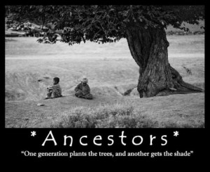 ... plants the trees, and another gets the shade.