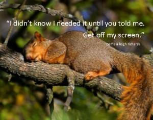 Squirrel Brains Quotes