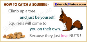 love nuts quotes pictures