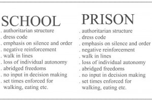 Funny photos funny school vs prison comparison