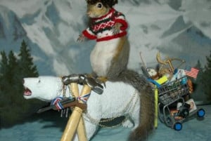 Rocky The Flying Squirrel Costume The pet squirrel who kept