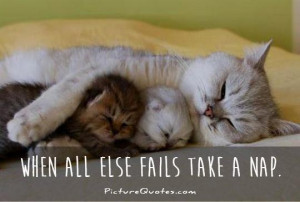 Funny Quotes Sleep Quotes Fail Quotes Nap Quotes