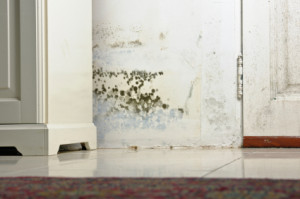 ... breathing isn't as easy as usual; welcome to your new damp home