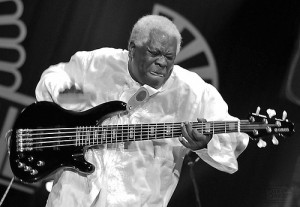 BLOG - Funny Bass Player Pictures