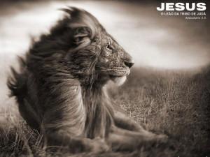 Leão da tribo de Juda 1280x960 Papel de Parede Wallpaper