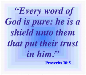 Proverbs 30.5 Bible Verse