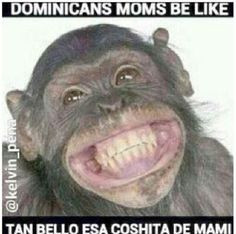 Dominicans be like