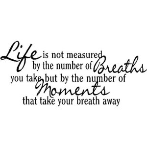 Wall Quotes Life Is Not Measured By The Breaths Vinyl Wall Quote