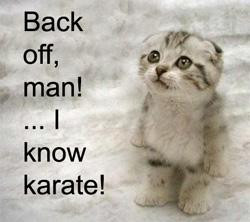 Karate Quotes Funny