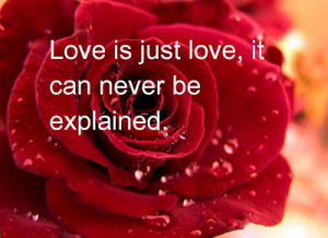 Romantic Quotes For Him For Her And Sayings for Girlfriend With Images ...