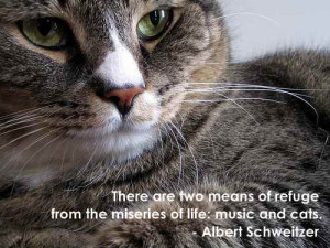 ... refuge from the miseries of life: music and cats.