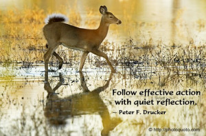 Follow effective action with quiet reflection.