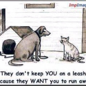 Bad dog! ;)